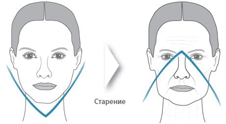 Скульптурное моделирование лица